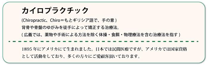 カイロ 辞書.jpg